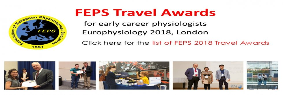 List of FEPS 2018 Travel Awards